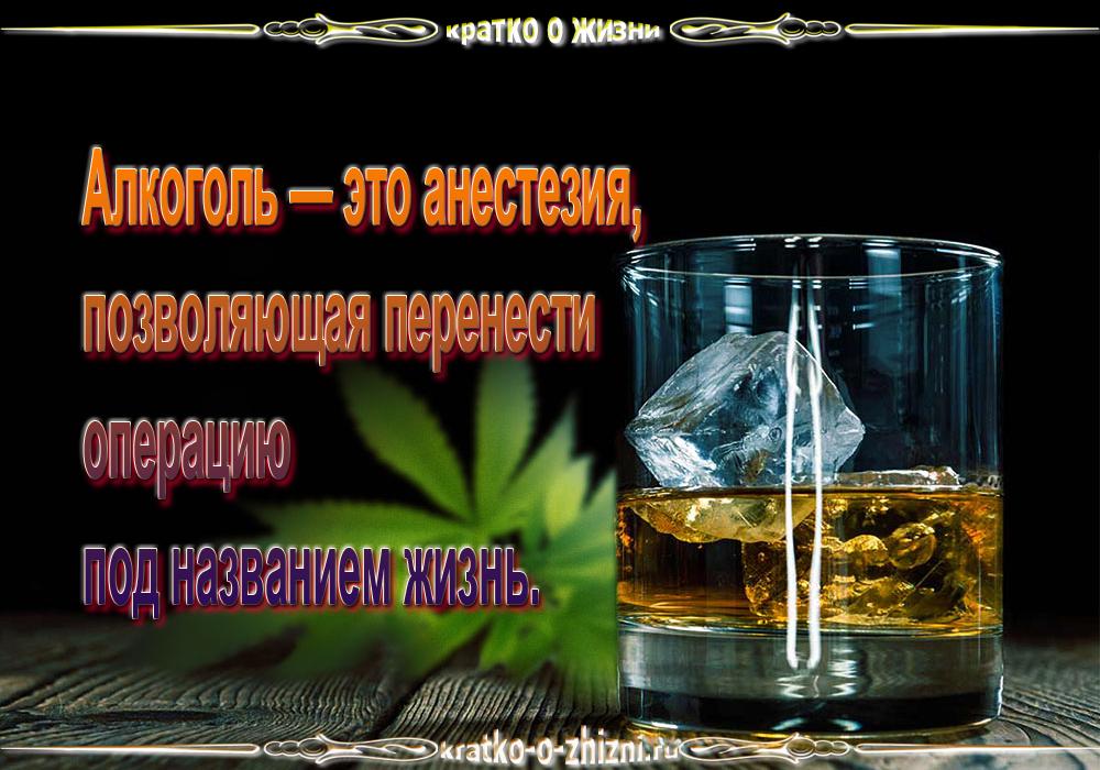 Алкоголь — это анестезия, позволяющая перенести операцию под названием жизнь